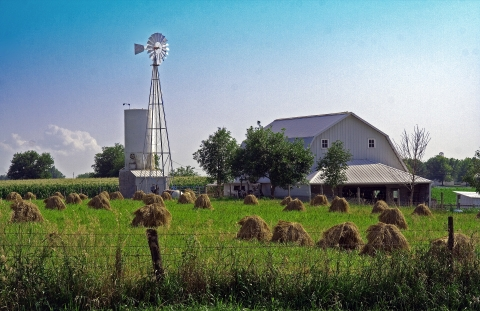 Kalona Amish field and windmill
