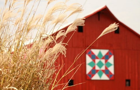 Washington barn quilt